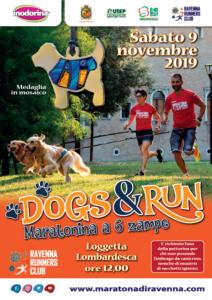 DOGS & RUN